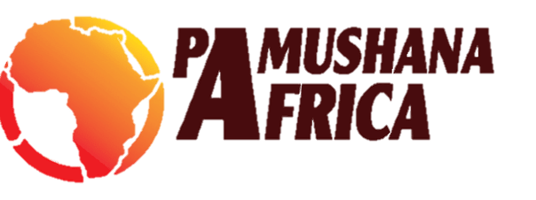 Pamushana Africa Group | Vehicle Hires | Staff Shuttles | Airport Shuttles | Day Tours | Weekend Getaways|